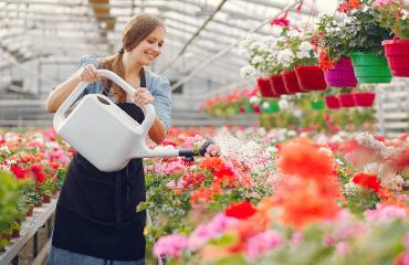 Woman Watering Flowers in Greenhouse