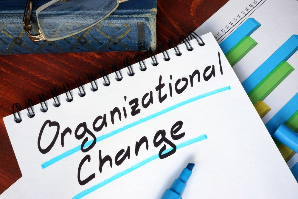 Organizational Change Management and ERP Success