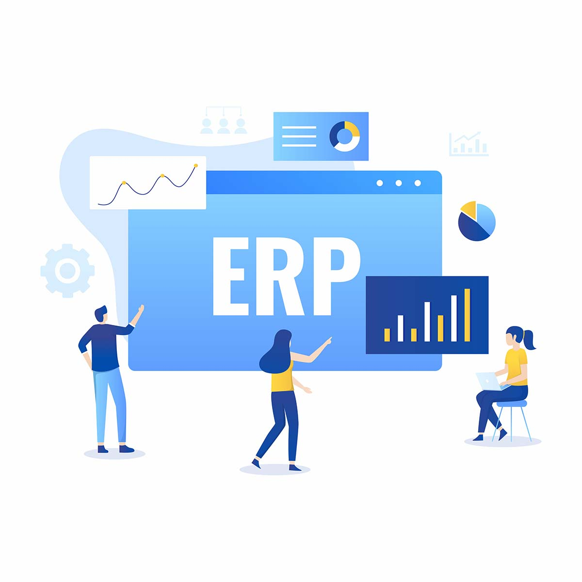 ERP System Implementation Phases